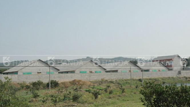 吉林省吉林市宏达养殖基地